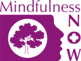 cropped-mindfulness-now-logo